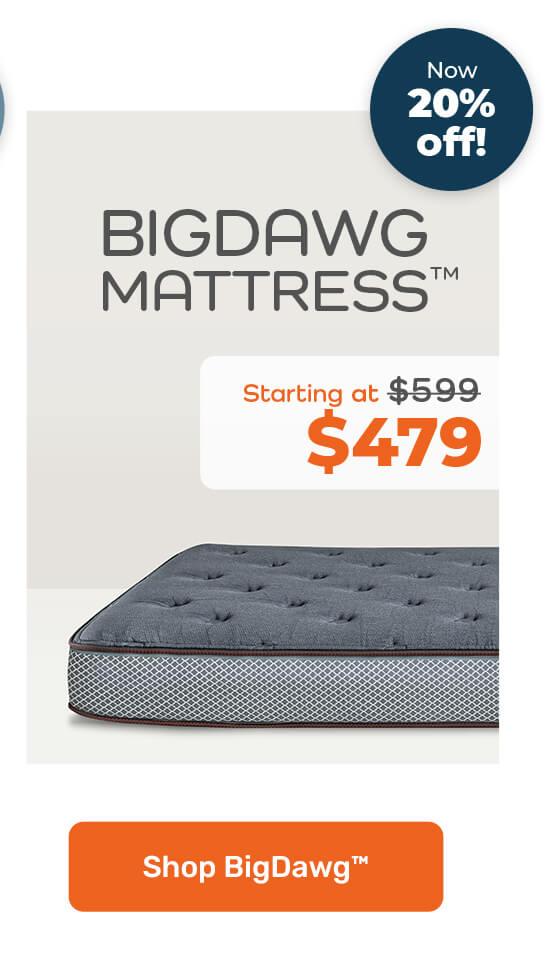 Bigdawg Mattress