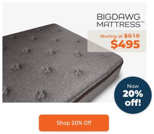 bigdawg mattress reviews