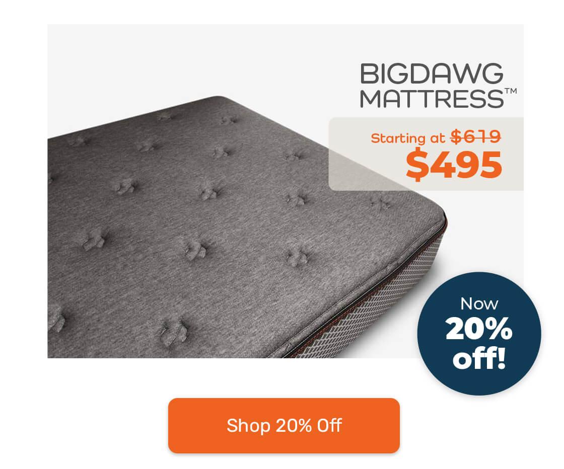 bigdawg mattress sale